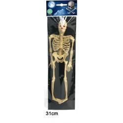 Squelette Souple 30cm