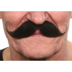 Moustache Guillaume Noir