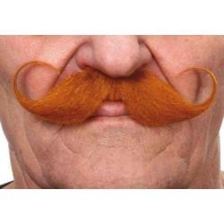 Moustache Guillaume Roux