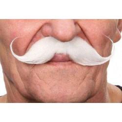 Moustache Guillaume Blanc