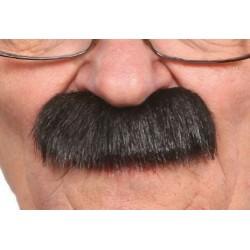 Moustache Brosse Noir