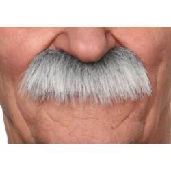 Moustache Brosse Gris