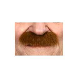 Moustache Brosse Roux