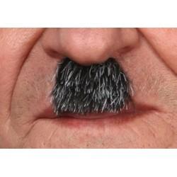 Moustache Charlot Poivre et Sel