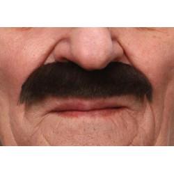 Moustache Clark Brun