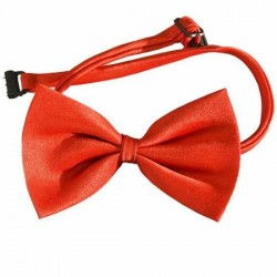 Noeud Papillon Satin Rouge