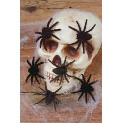 Araignées Velues Noir 6 Pièces